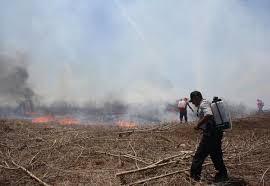 Presentan nuevo calendario de quema agrícola en Yucatán